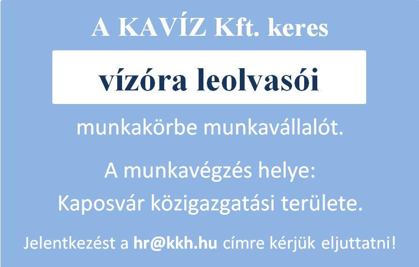 vizóra_leolvasó_álláshirdetés_